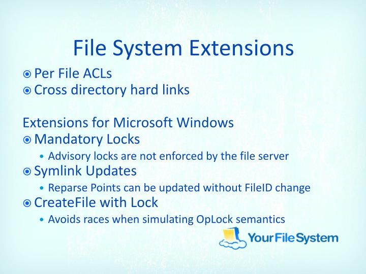 File System Extensions