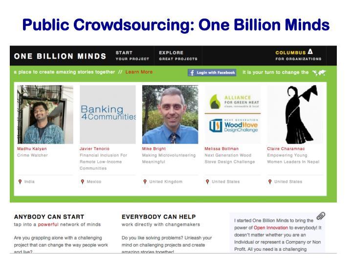 Public Crowdsourcing: One Billion Minds