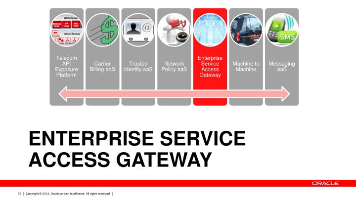 Enterprise Service Access Gateway