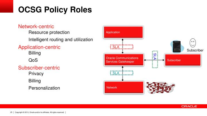 OCSG Policy Roles