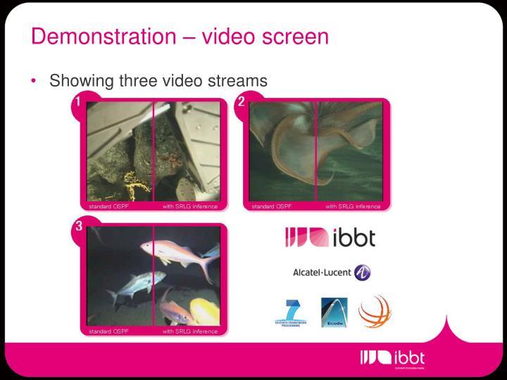 Demonstration – video screen