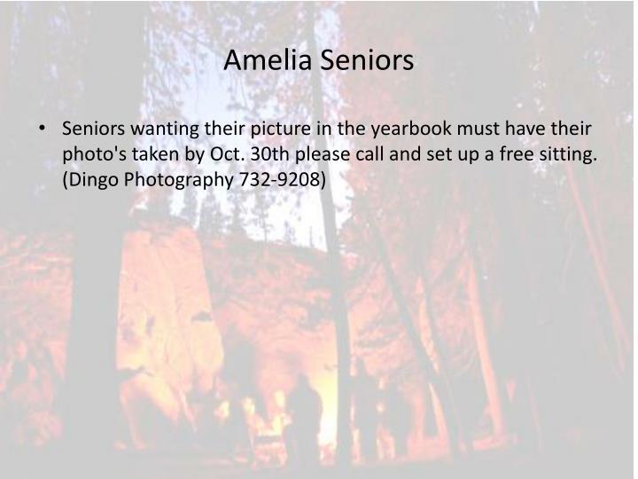 Amelia Seniors