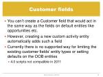 customer fields