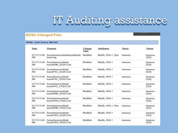 IT Auditing assistance