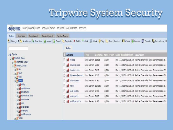 Tripwire System Security