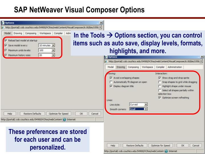 SAP NetWeaver Visual Composer Options
