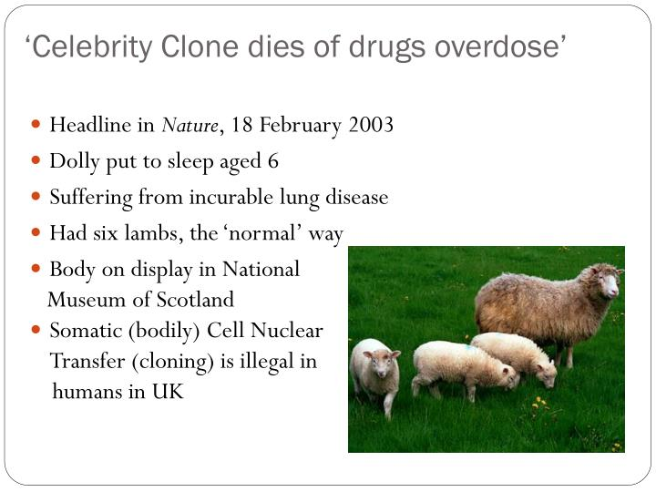 'Celebrity Clone dies of drugs overdose'