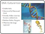 dna cultural icon