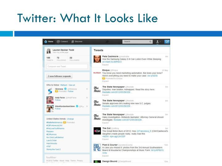 Twitter: What It Looks Like