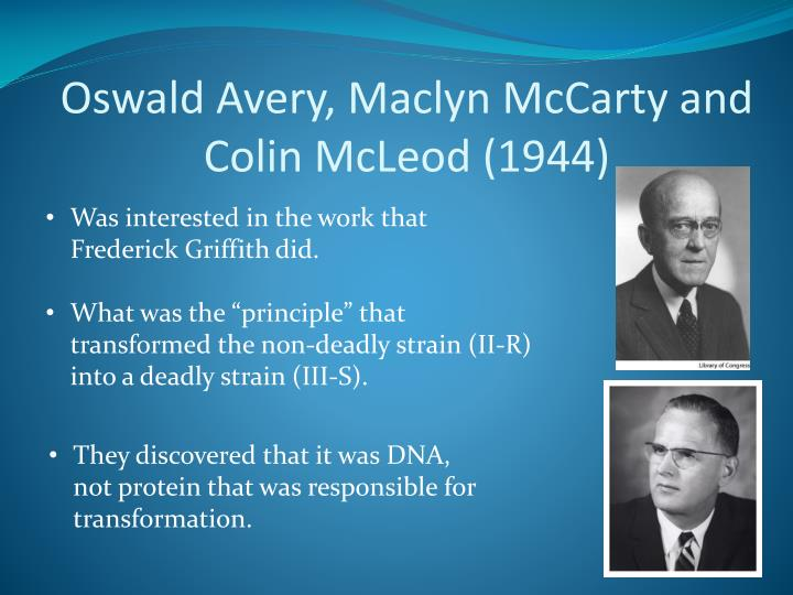 Oswald Avery, Maclyn McCarty and Colin