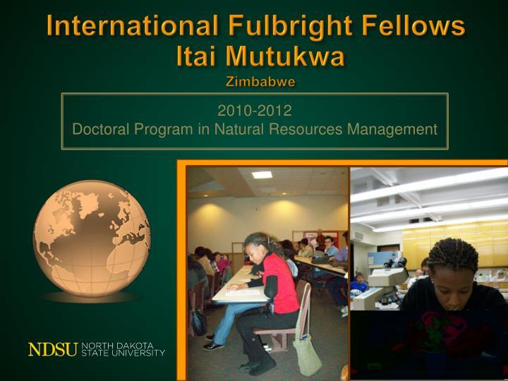 International Fulbright Fellows