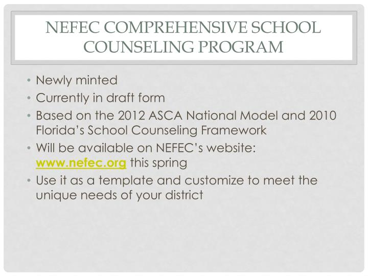 NEFEC Comprehensive School Counseling Program