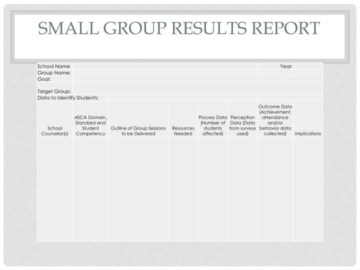 Small Group Results Report