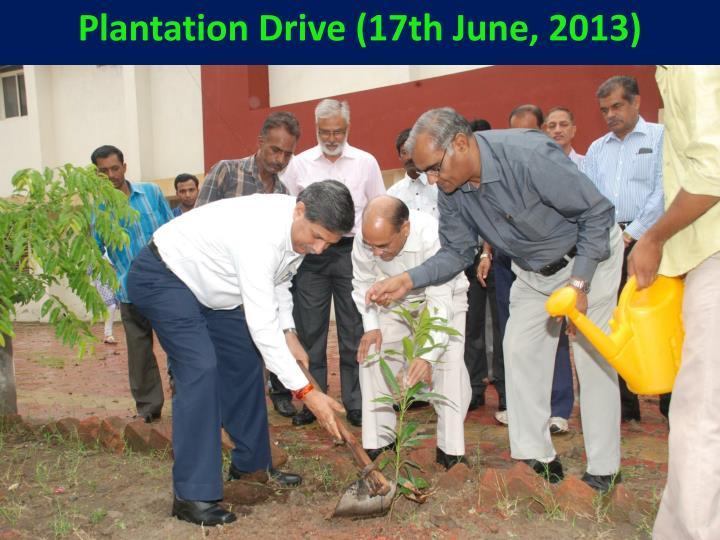 Plantation Drive (17th June, 2013)