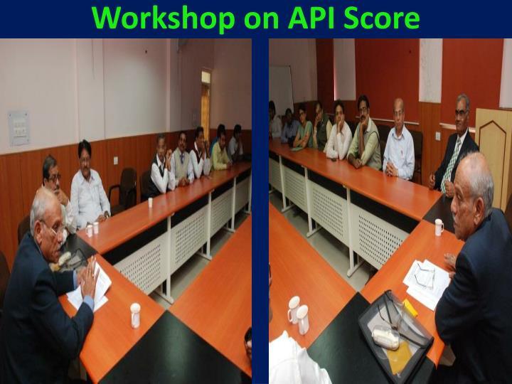 Workshop on API Score