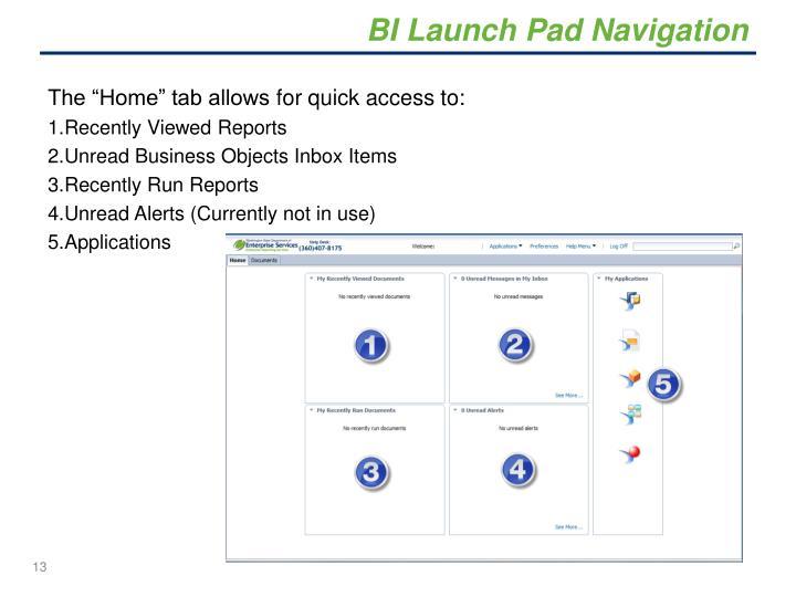 BI Launch Pad Navigation