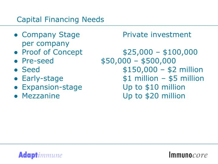 Capital Financing Needs