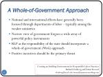 a whole of government approach