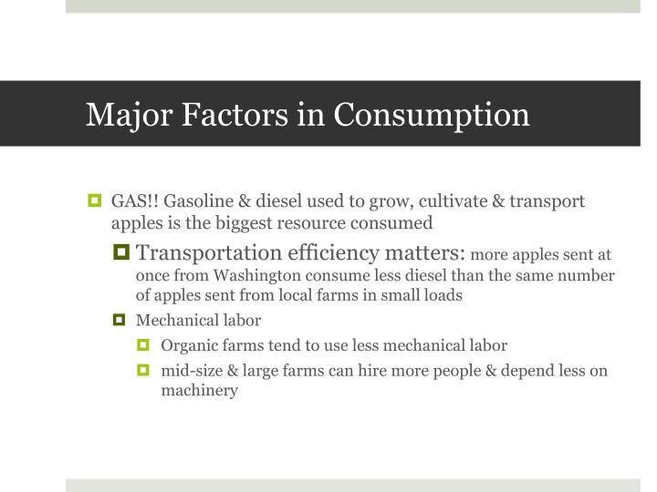 Major Factors in Consumption