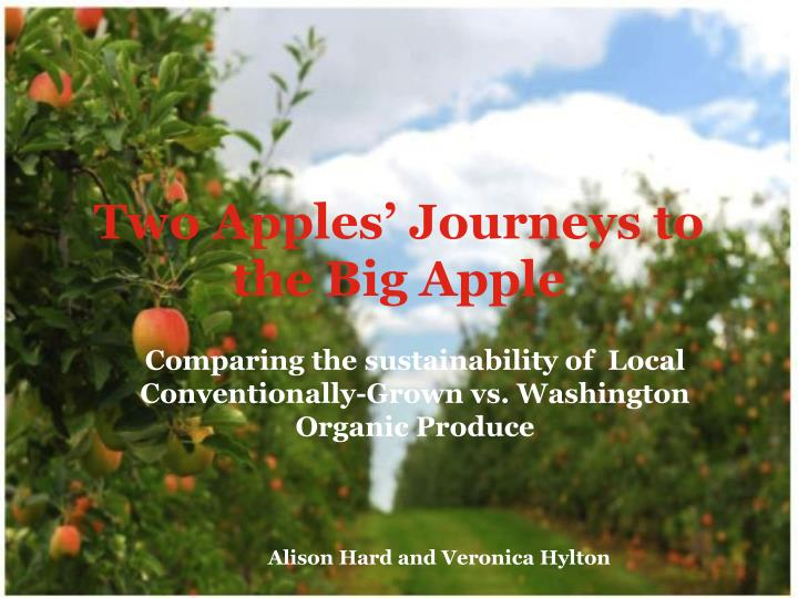 Two apples journeys to the big apple