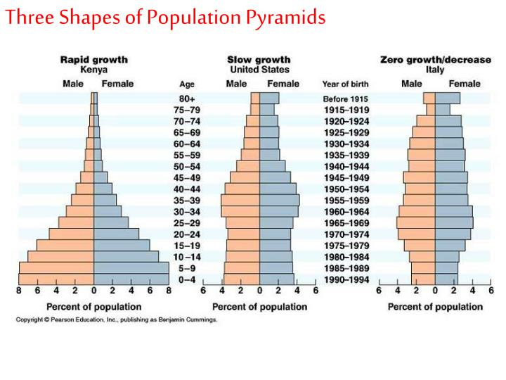 Three Shapes of Population Pyramids