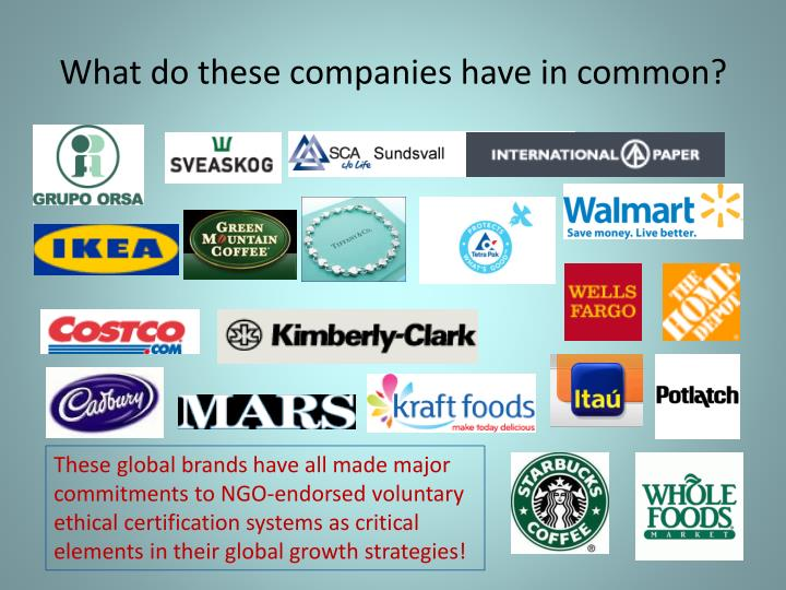 What do these companies have in common