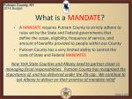 what is a mandate