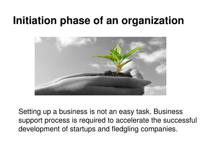 Initiation phase of an organization