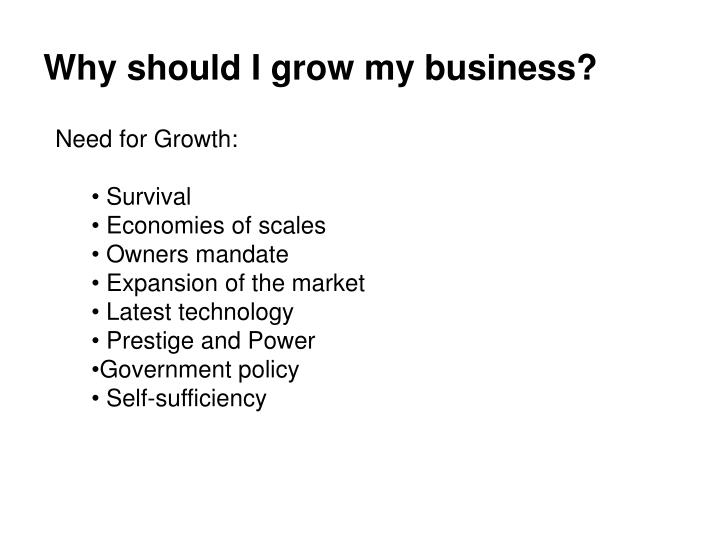 Why should I grow my business?