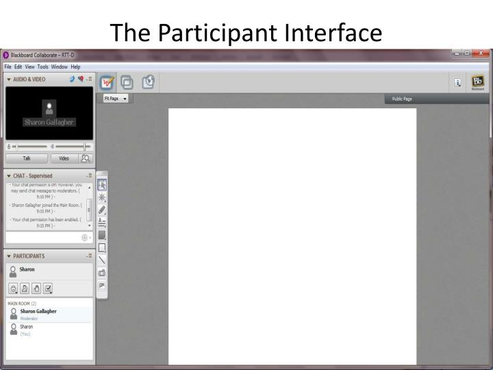 The Participant Interface