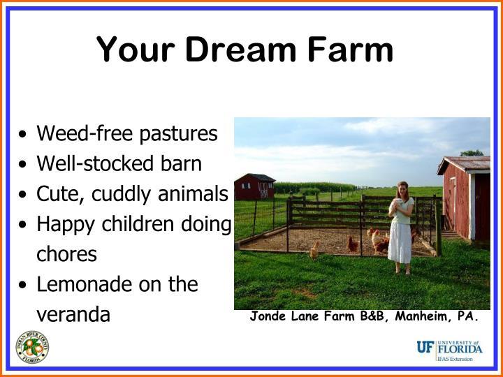 Your Dream Farm