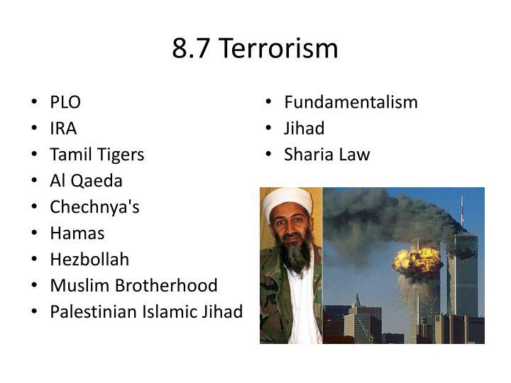 8.7 Terrorism