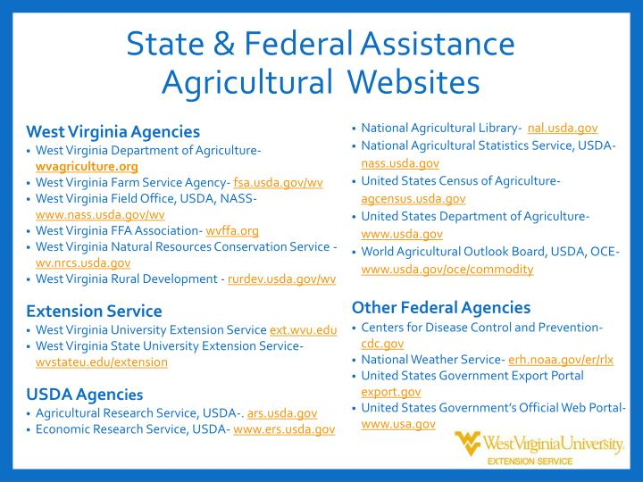 State & Federal Assistance
