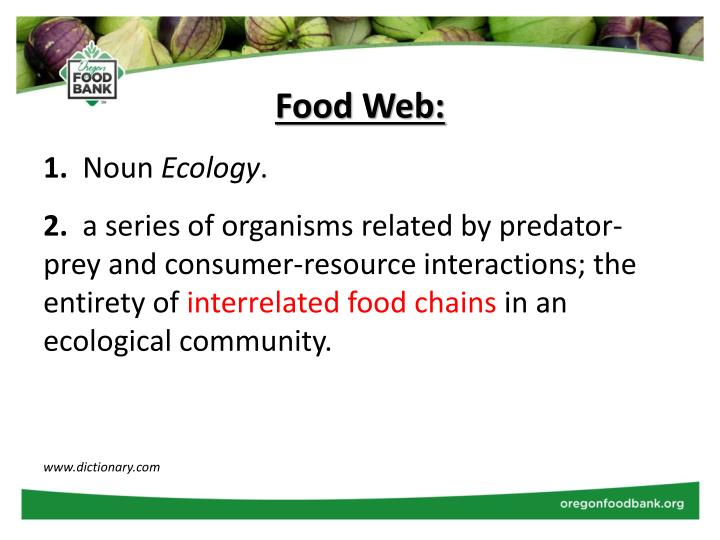 Food Web: