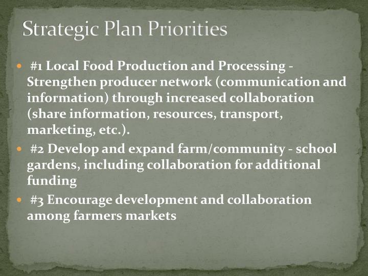 Strategic Plan Priorities