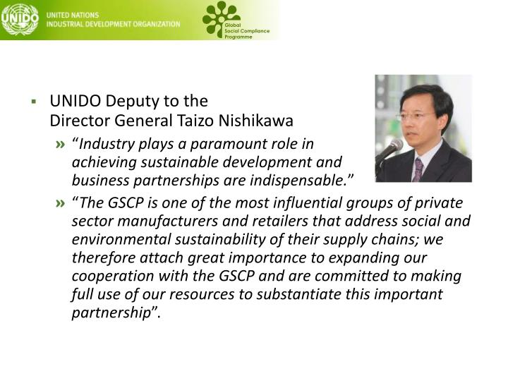 UNIDO Deputy to the