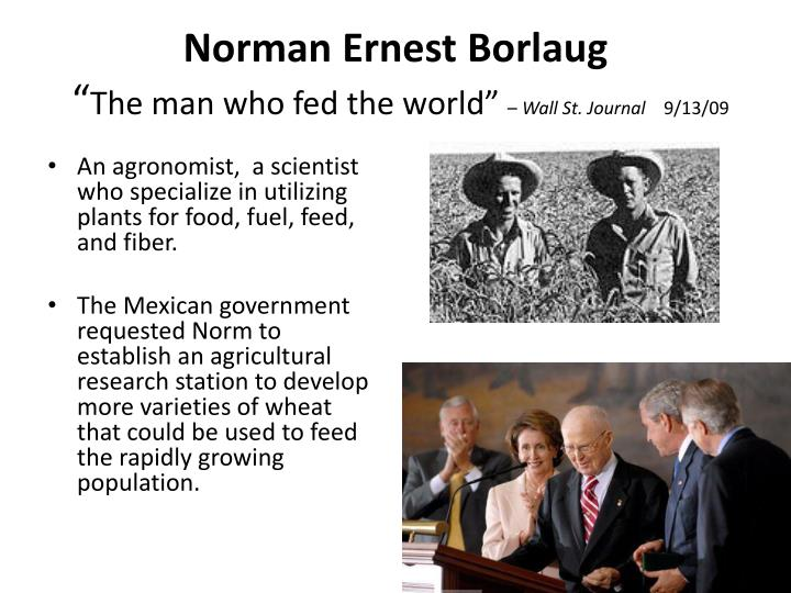 Norman ernest borlaug the man who fed the world wall st journal 9 13 09