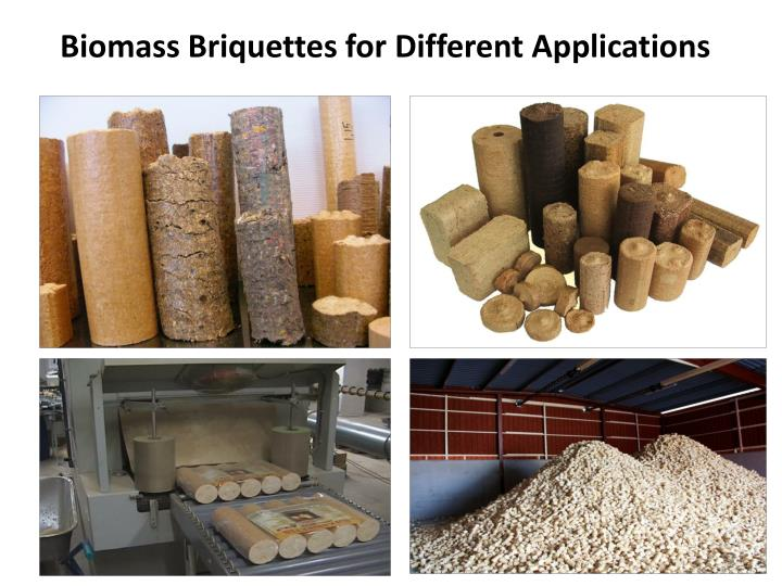 Biomass Briquettes for Different Applications