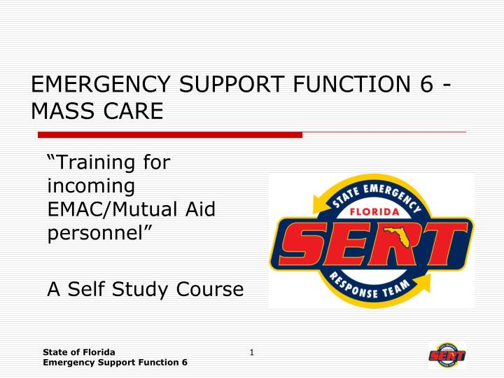 Emergency support function 6 mass care