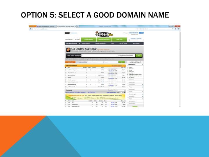 Option 5: Select a Good Domain Name