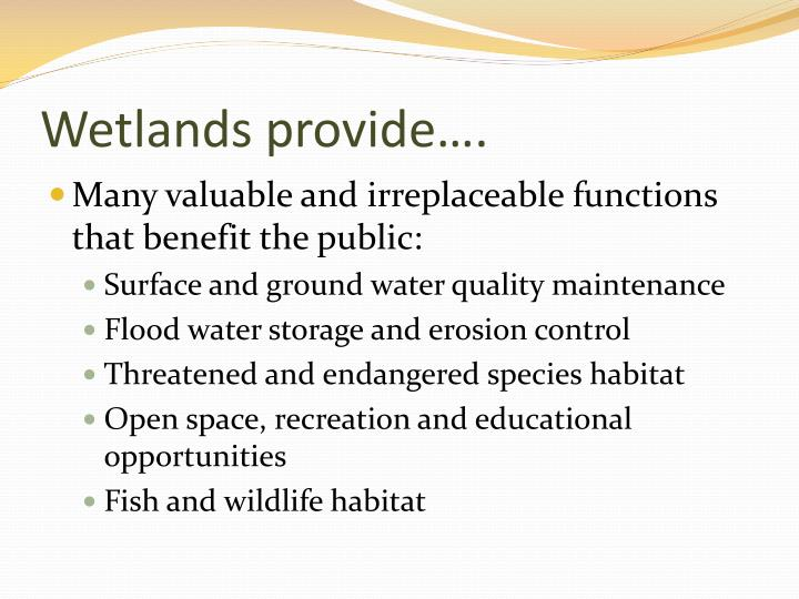 Wetlands provide….