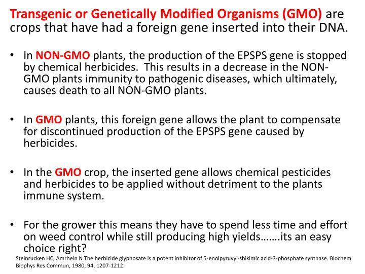 Transgenic or Genetically Modified Organisms (GMO)