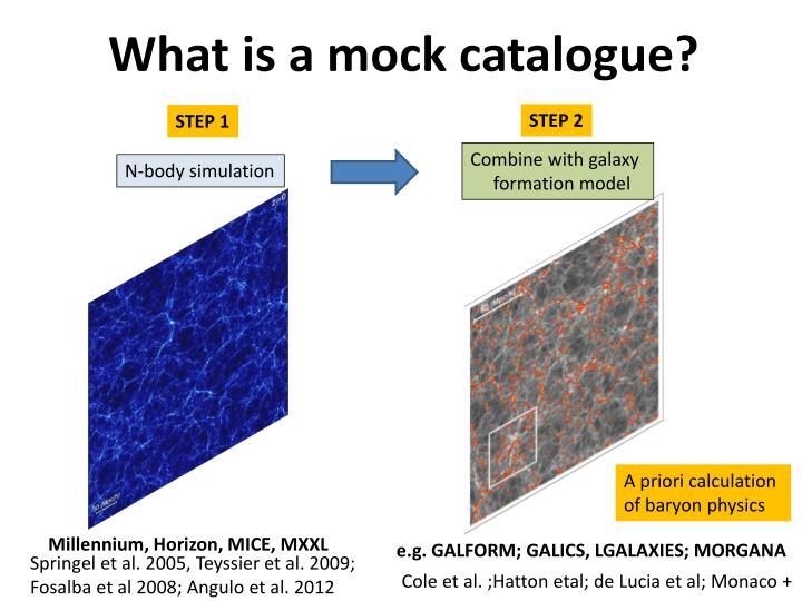 What is a mock catalogue?