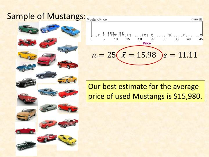 Sample of Mustangs: