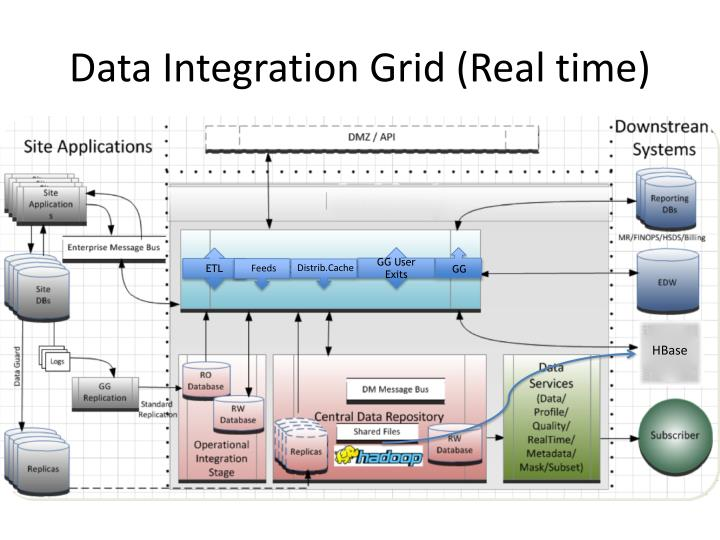 Data Integration Grid (Real time)