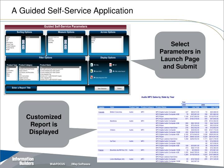 A Guided Self-Service Application