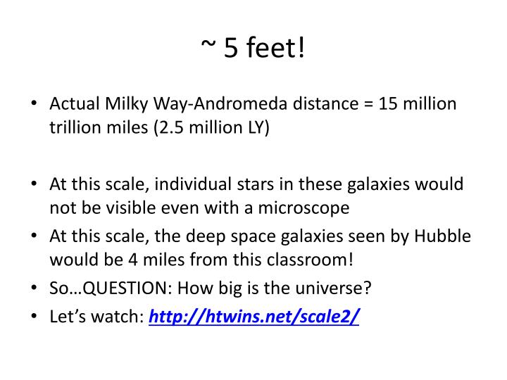 ~ 5 feet!