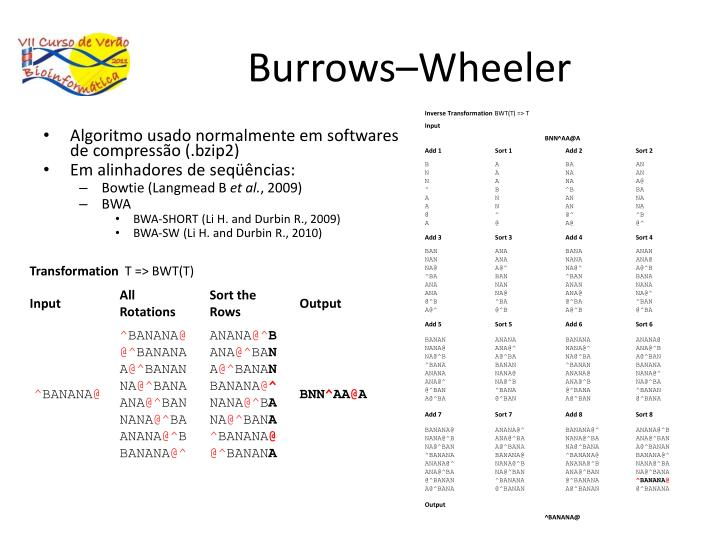 Burrows–Wheeler