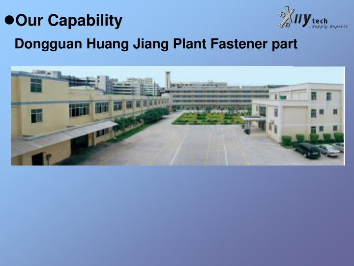 Our Capability