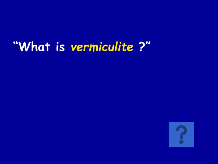 """What is"